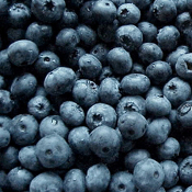 """BLUEBERRY"" E-LIQUID"
